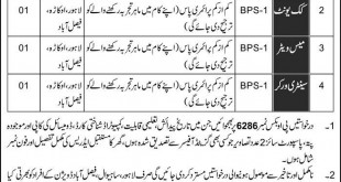Job In Ministry Of Defence Govt Of Pakistan 11 Dec 2017